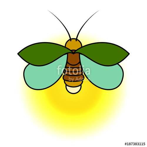 Firefly Insect Drawing At Getdrawings Com Free For Personal Use