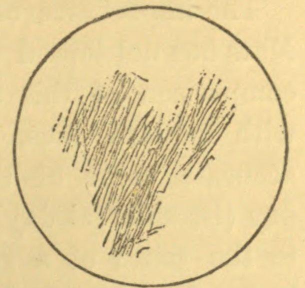 610x576 Drawing Fourth Planet