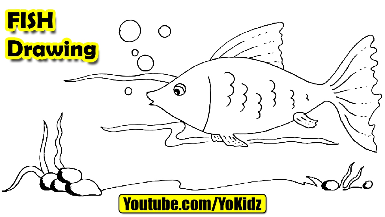 1280x720 How To Draw A Fish For Kids