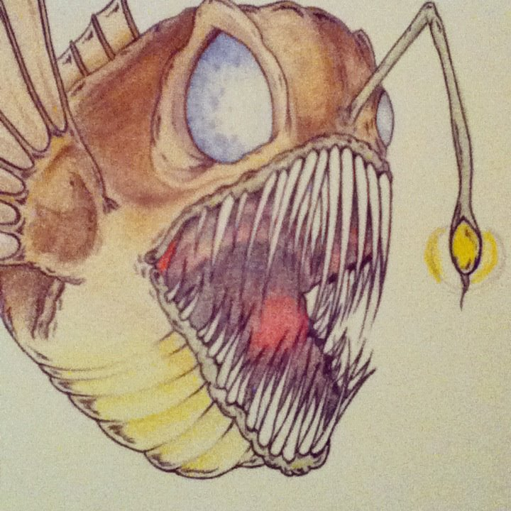 720x720 angler fish drawing first time colouring by vampyrat on deviantart