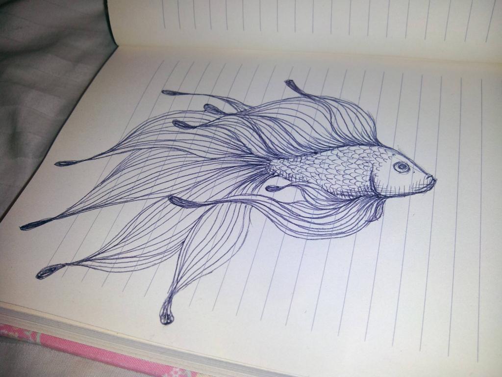 1024x768 Fish Water Is Jumping Hd Pencil Drawing Pencil Drawing Of Fish