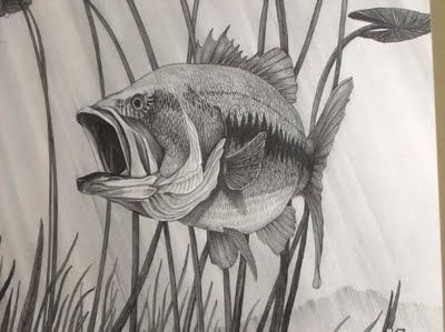 400x299 Image Result For Tonal Drawings Of Fishes Sketch Book