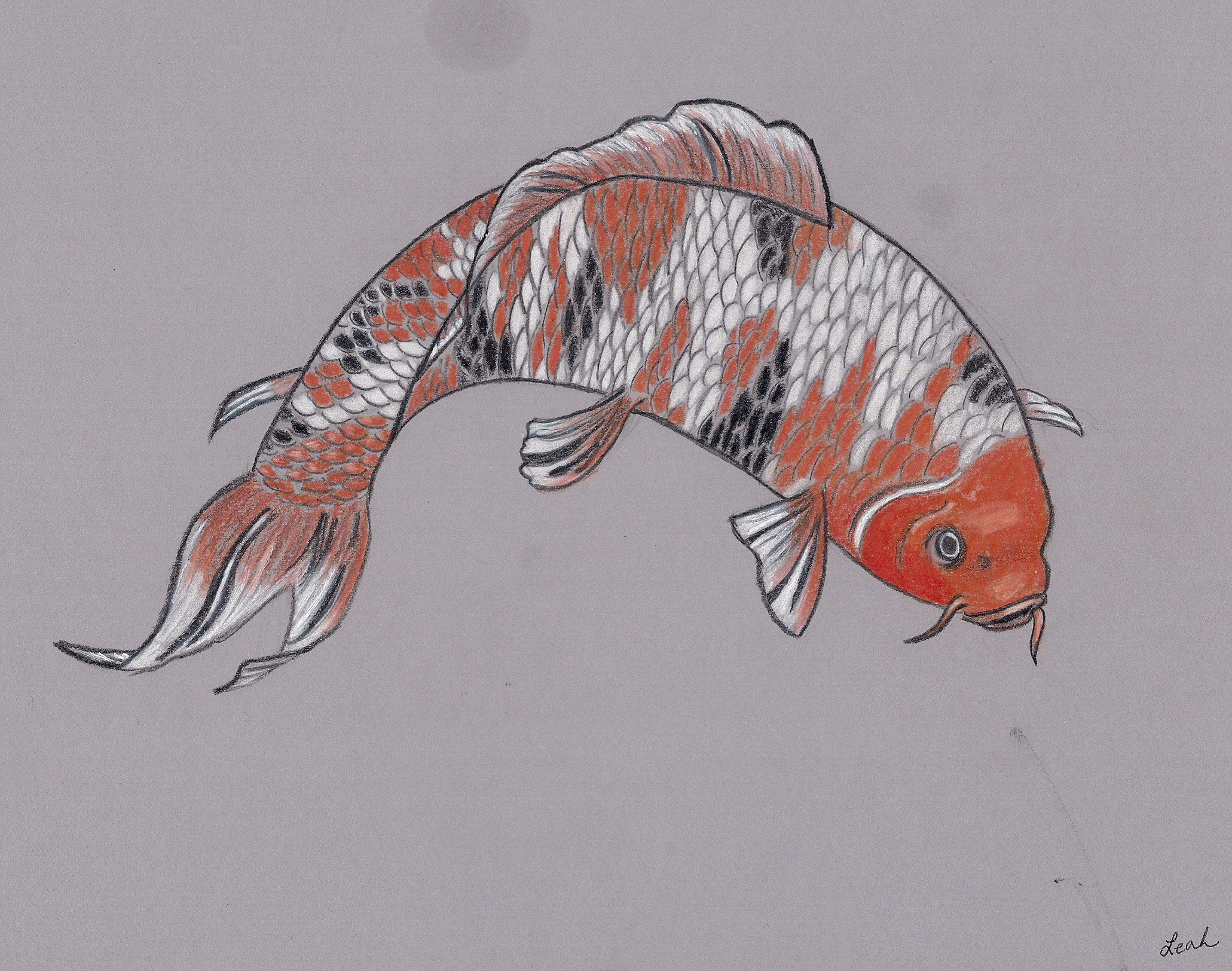 2061x1624 Fish Pencil Drawing By Sailorhorizon