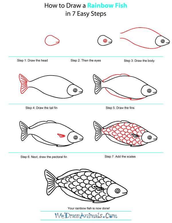 600x776 how to draw a rainbow fish