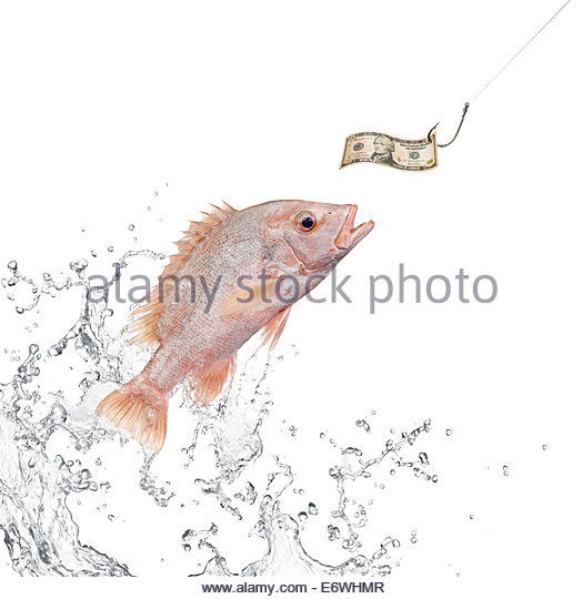 524x540 Fish Jumping Out The Water Stock Photos Amp Fish Jumping Out