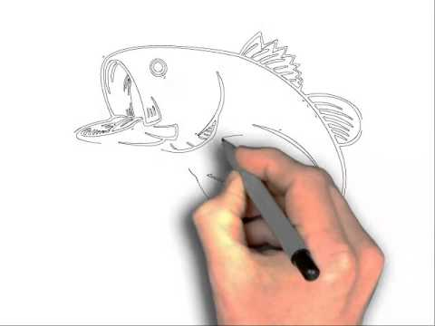480x360 How To Draw A Fish Jumping Out Of Water