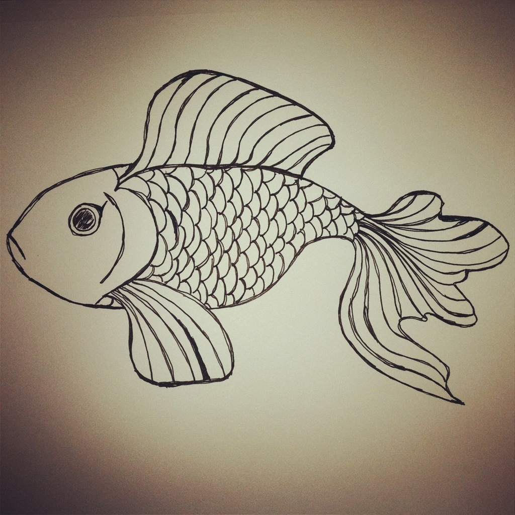 Fish Scales Drawing at GetDrawings.com | Free for personal use Fish ...