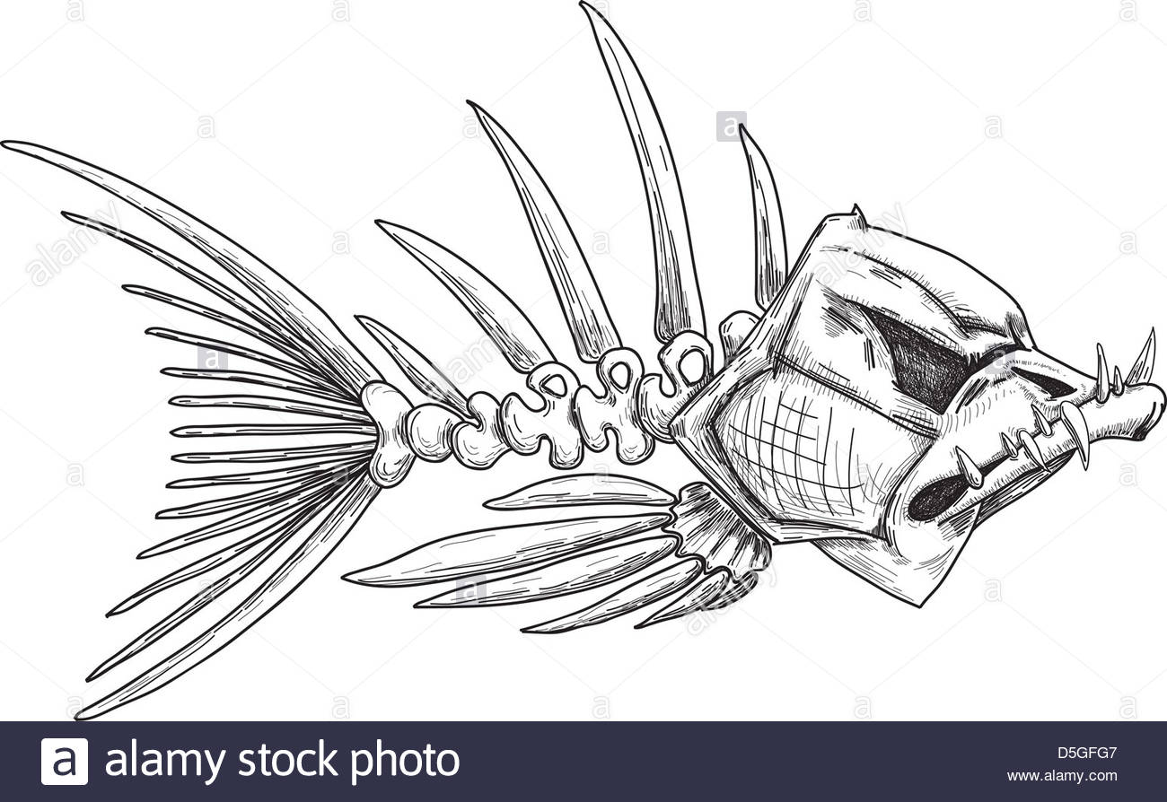 Fish Skeleton Drawing at GetDrawings.com   Free for personal use ...