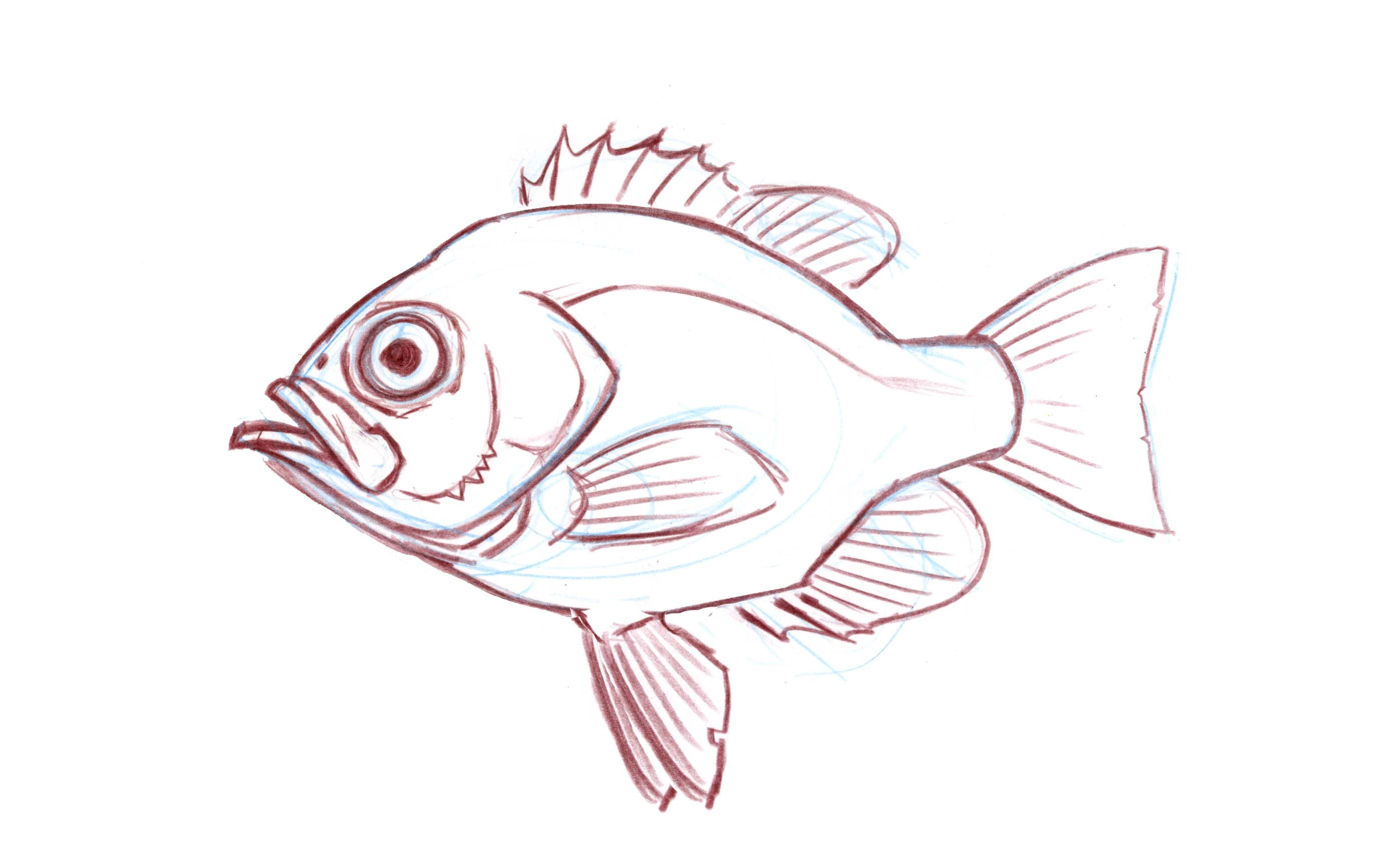 2797x1684 Drawing Fish Archives