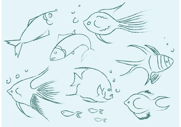 700x490 Free Vector Fish Sketches