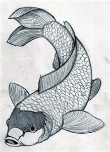 218x300 Drawings Koi Fish Drawings