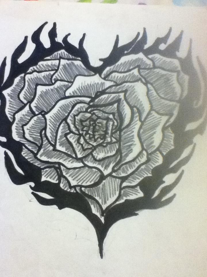 720x960 Flaming Rose Drawing