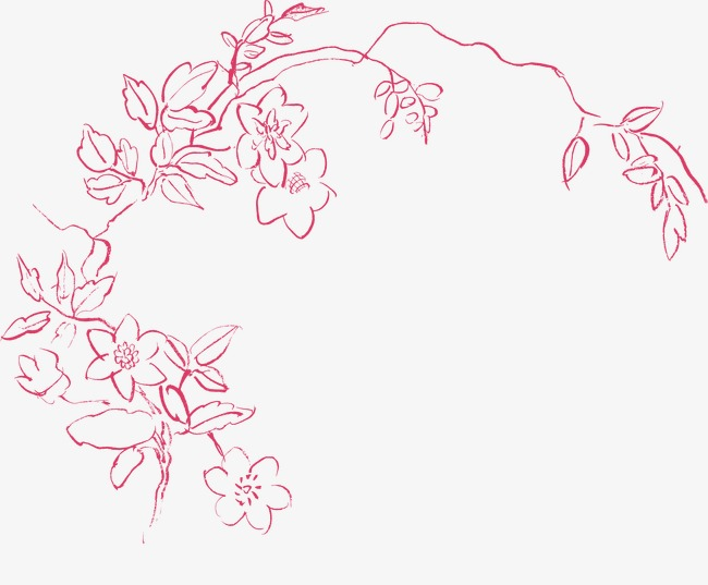 650x537 Line Drawing Floral Floral Design Material, Beautiful Flower