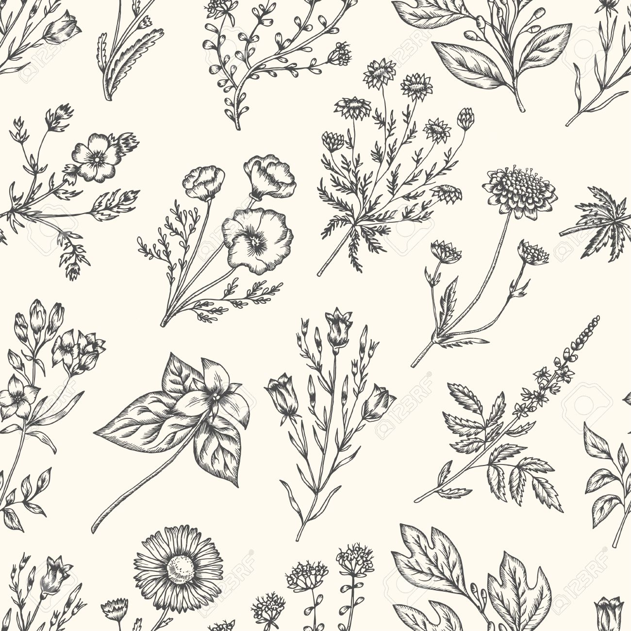 1300x1300 Wild Flowers And Herbs. Seamless Floral Pattern. Botanical Drawing