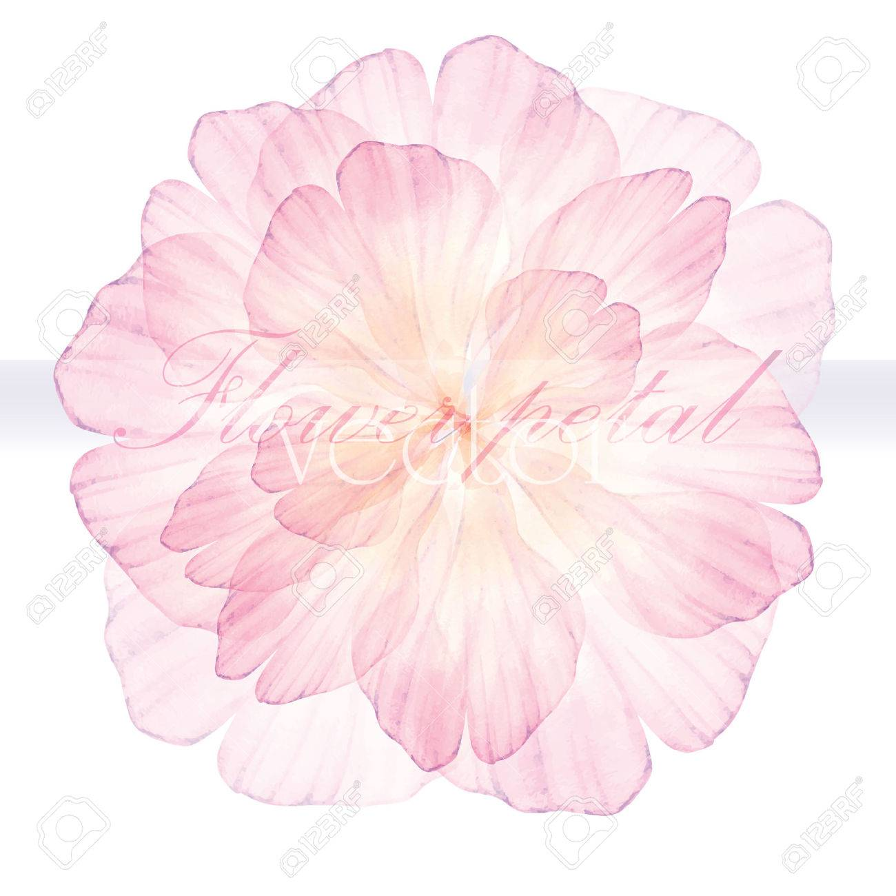 1300x1300 Watercolor Floral Round Patterns. Pink Flower. Vectorized