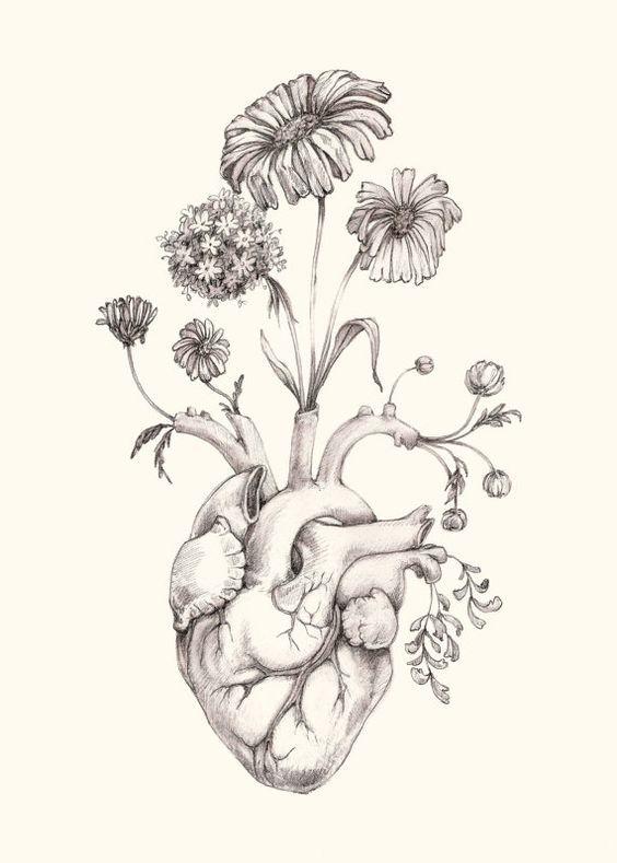 564x789 8x10 Print Of Original Drawing Blooming Heart Graphite, Art