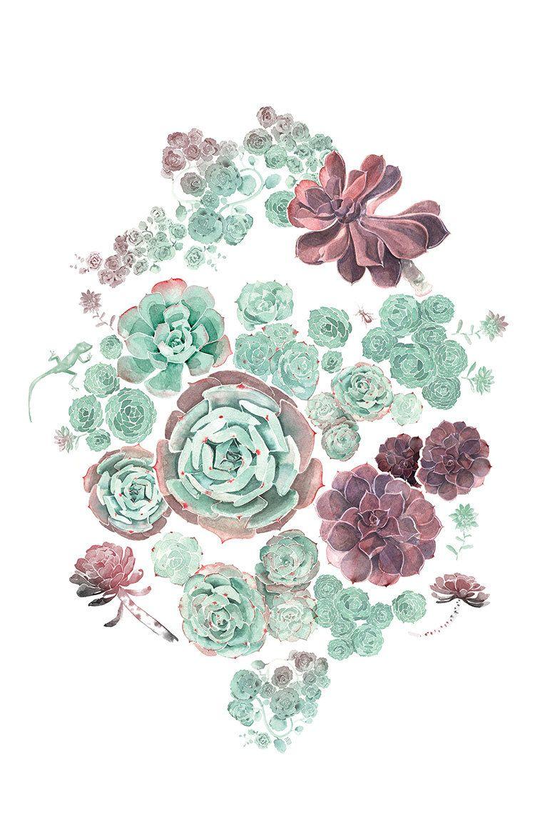 750x1149 Succulent Art Illustrations, Floral And Art