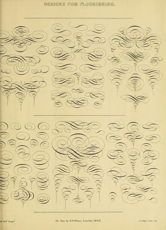 566x783 Sample Flourishes From A Hand Book For Mapping, Engineering,