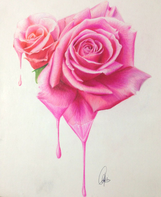 660x810 35 beautiful flower drawings and realistic color pencil drawings