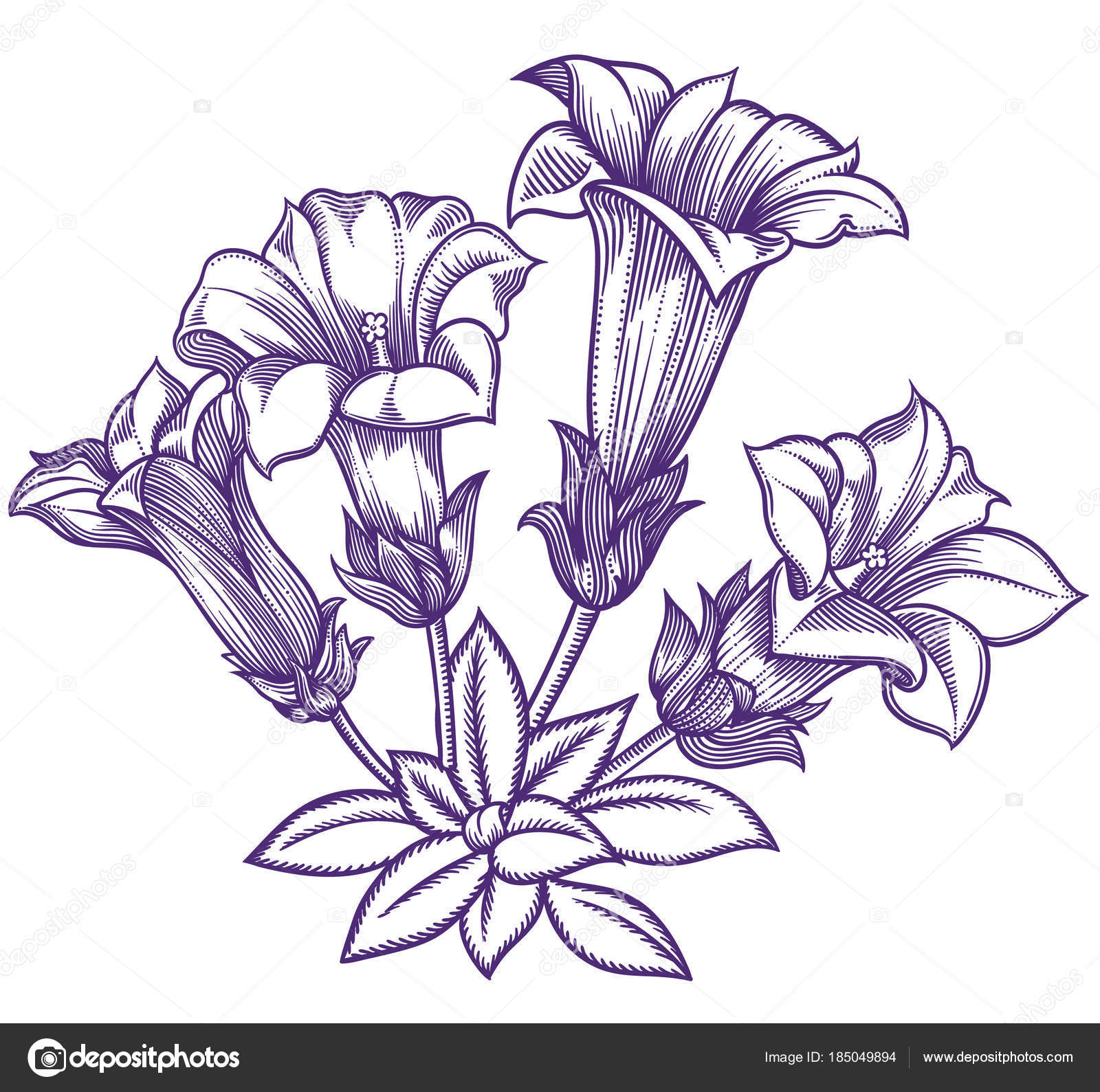 1600x1589 Blooming Forest Flowers , Detailed Hand Drawn Vector Illustration