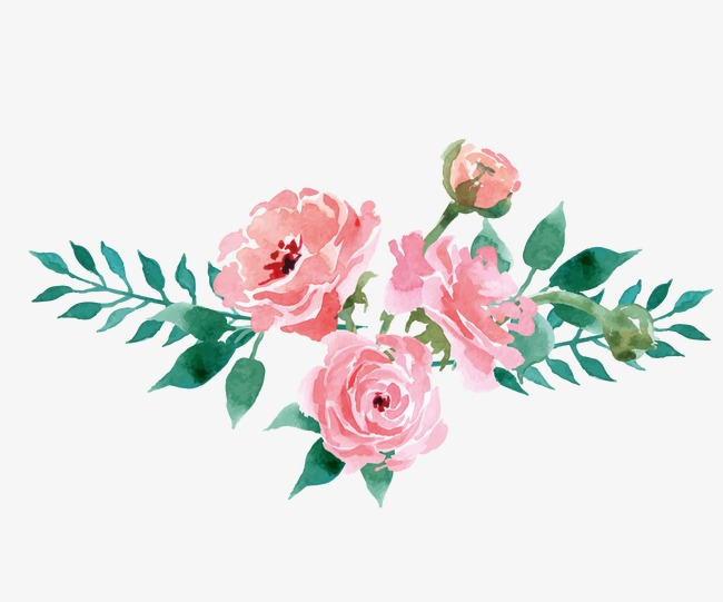 650x541 Floral Decoration, Drawing Plant, Flowers, Pink Flowers Png Image