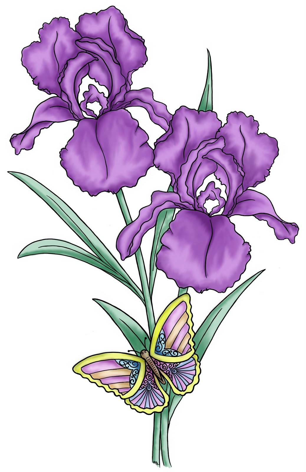 It is an image of Soft Purple Flowers Drawing