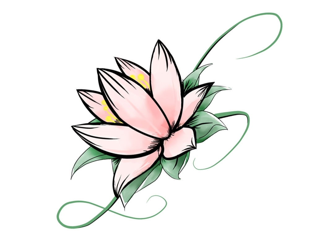 1024x768 Flower Drawing Design Simple Designs