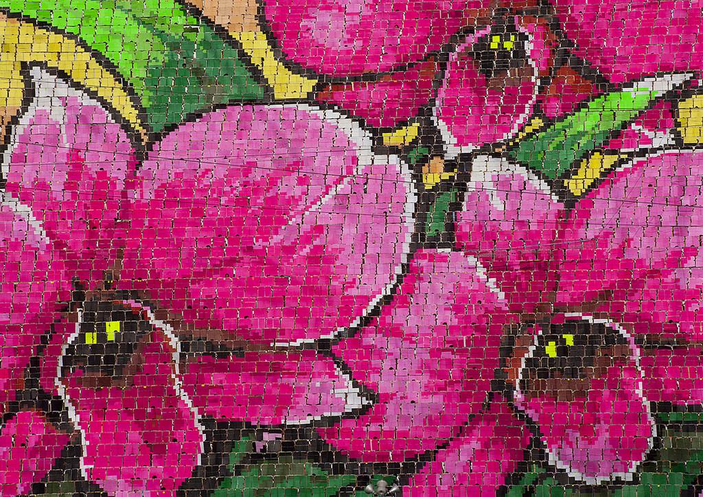 1024x724 Human Fresco Drawing Of Lily Flower At Arirang Mass Games