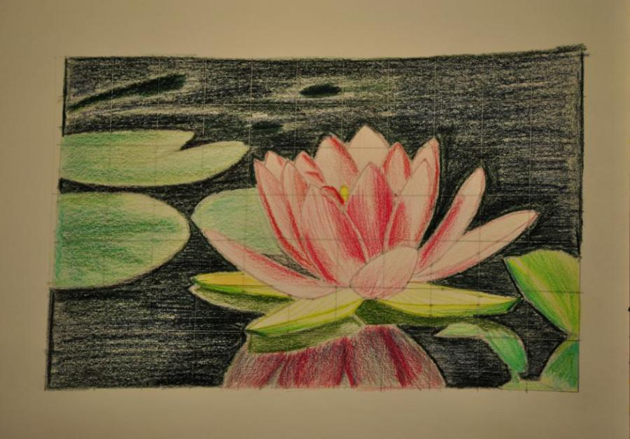 Flower drawing ideas at getdrawings free for personal use 900x627 lotus flower flowers drawings pictures drawings ideas for mightylinksfo