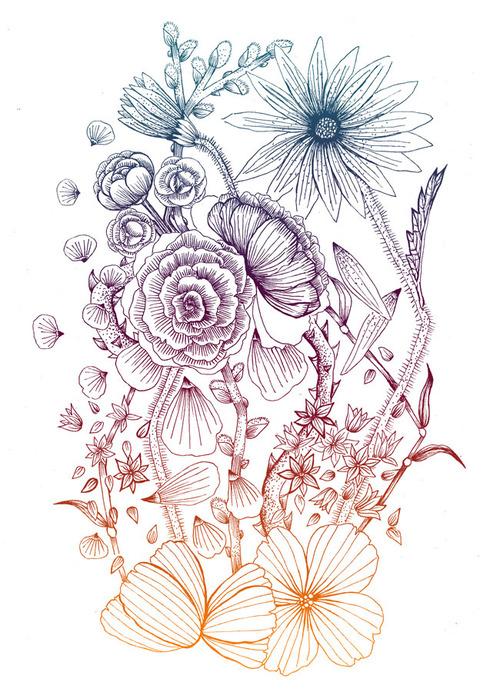 500x692 Photos Tumblr Flower Drawin,