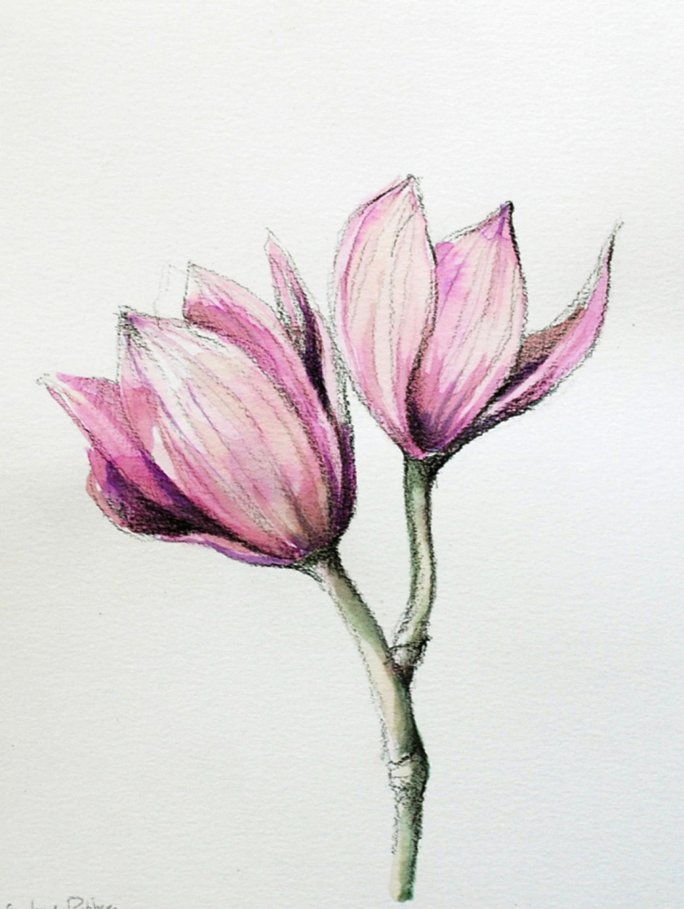 771x1024 Easy Drawings With Color Flower Drawing Color Easy Flower Drawings