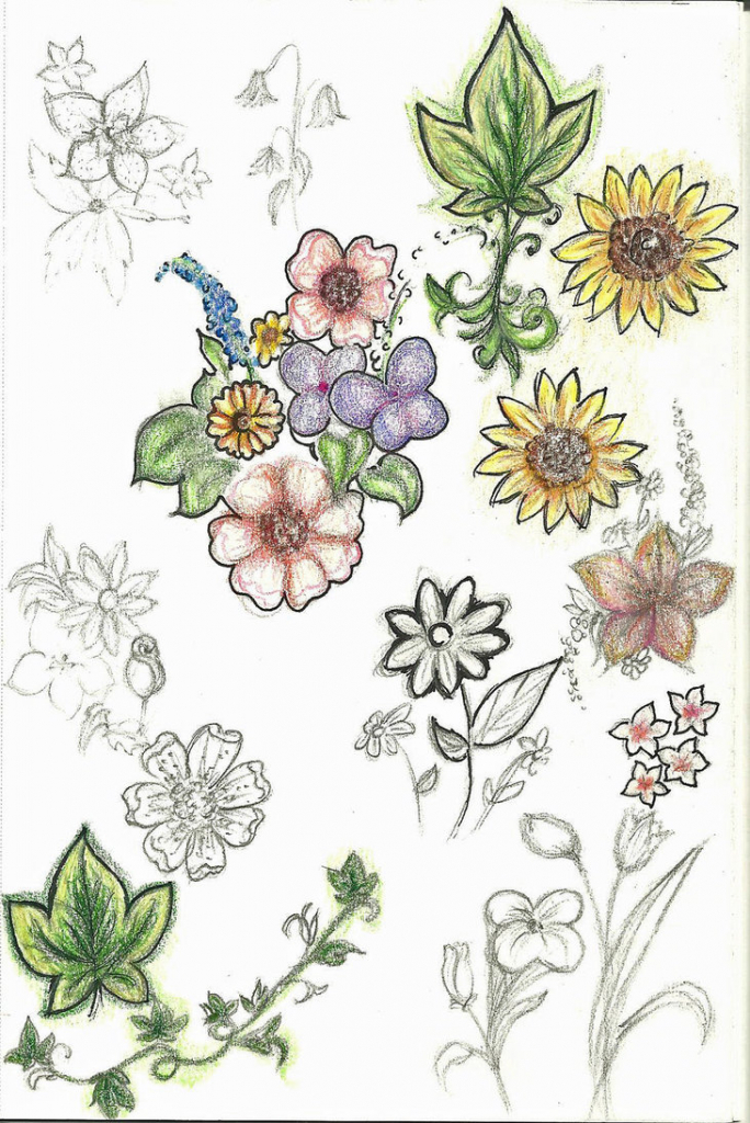 684x1024 Cute Flower Drawings Tumblr Flowers Inspiration