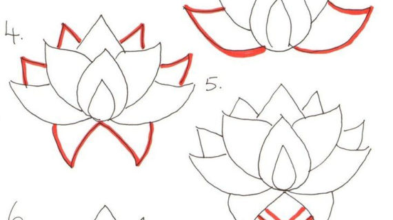 570x320 Lotus Flower Drawing Step By Step How To Draw A Lotus Flower Step