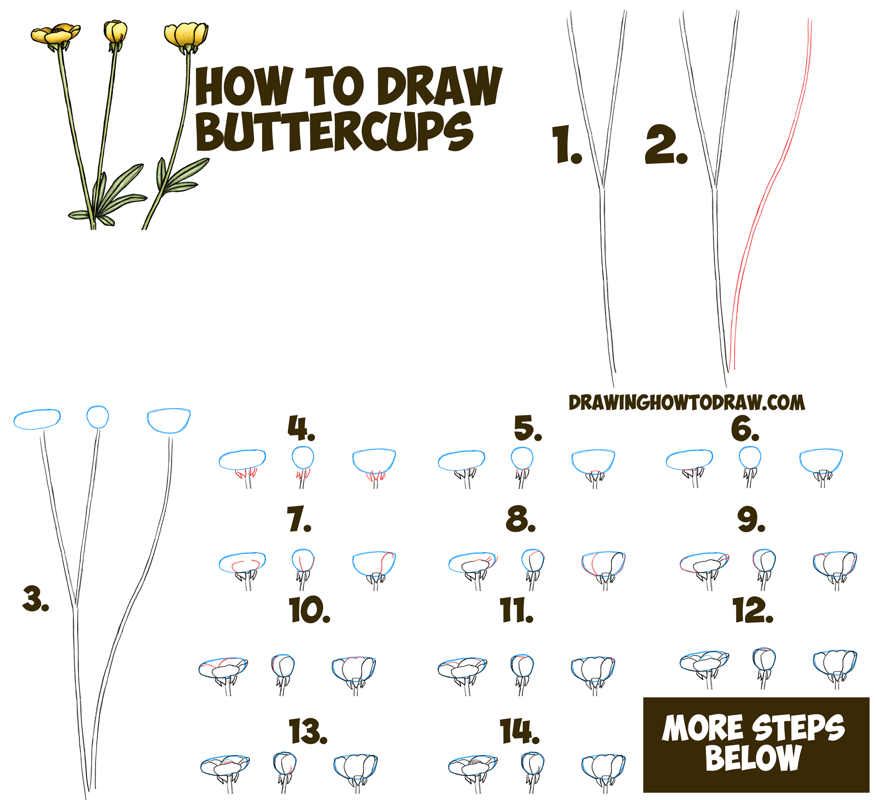 3000x2740 Easy Flower Drawings Step By Step How To Draw A Buttercup Flower