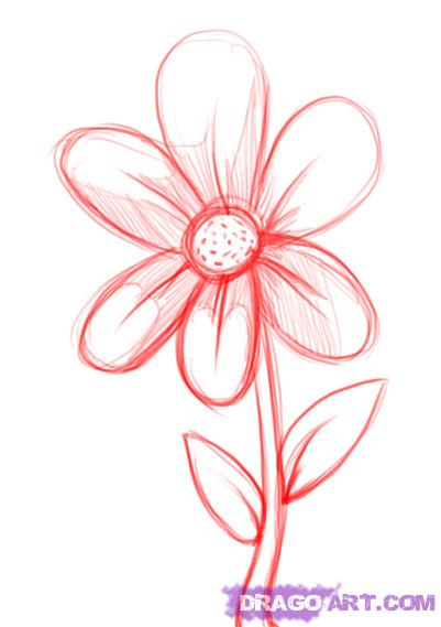 401x569 Photos How To Draw A Simple Flower