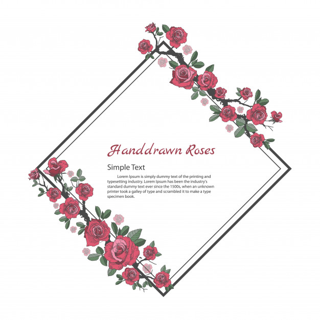 626x626 Flower Frame Of Rose. Drawing And Sketch On White Background
