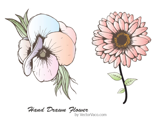 680x510 hand drawn flower vector download