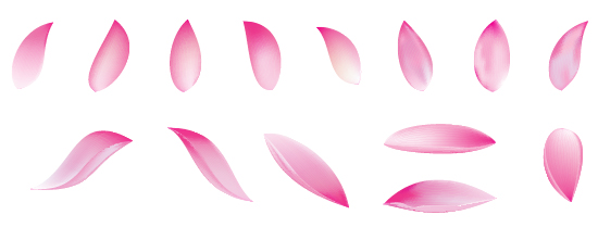 Flower petal drawing at getdrawings free for personal use 550x221 a lotus flower with adobe illustrator cs5 mightylinksfo