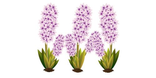 500x250 Illustrator Tutorial Vector Flower Plant