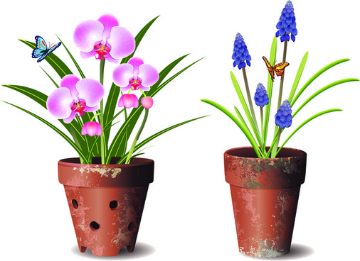506x368 Vector Flower Pots Drawing Free Vector Download (98,002 Free