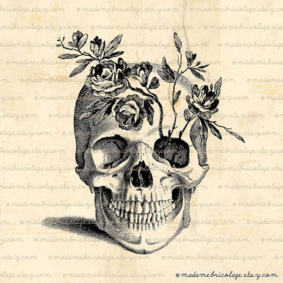 564x564 Pretty. Would Love A Skull Tattoo Sometime, A Good Reminder Of Our