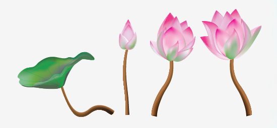 550x255 A Lotus Flower With Adobe Illustrator Cs5