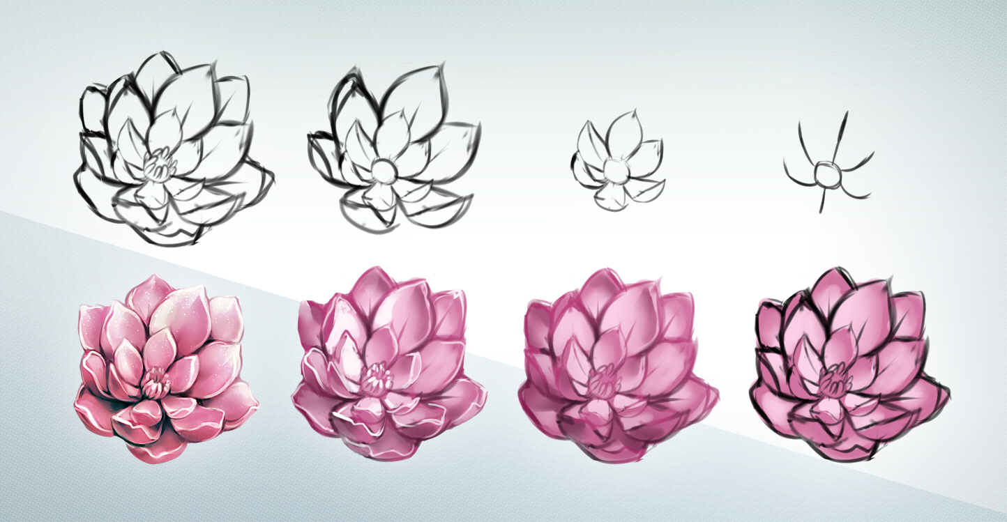 Flower Step By Step Drawing At Getdrawings Free For Personal