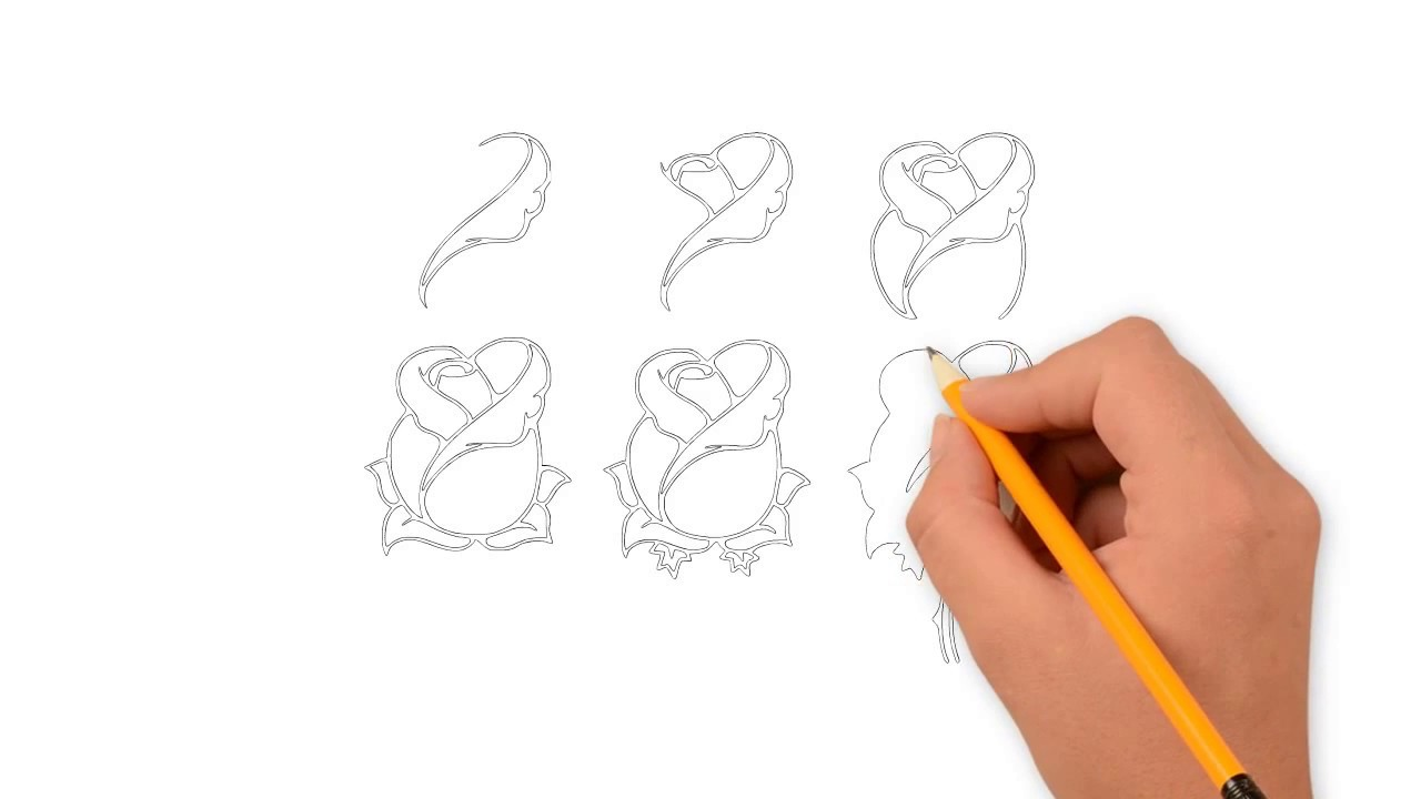 1280x720 Drawing Rose Draw Rose Tutorial Draw Rose Easy Step By Step
