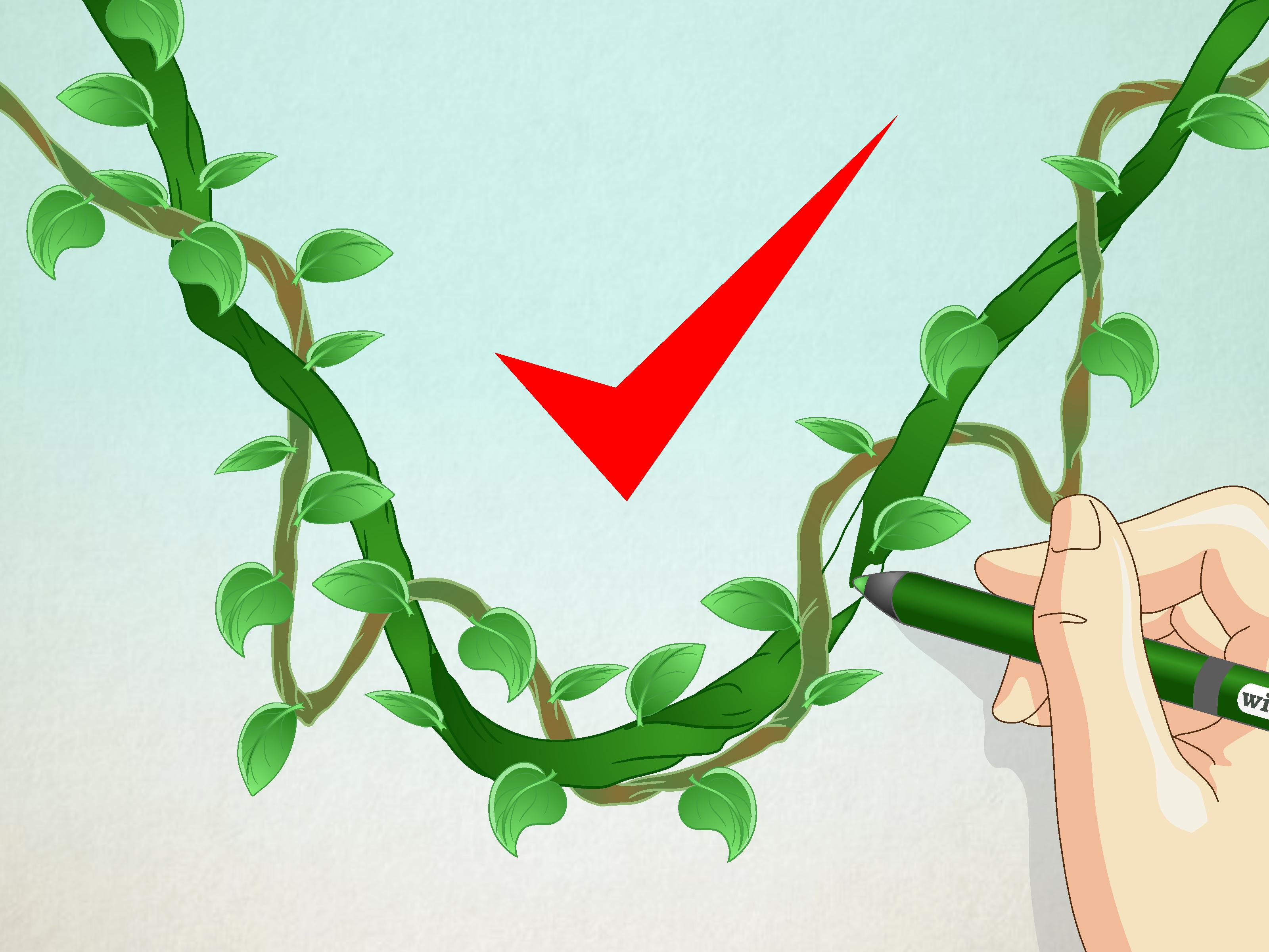 3200x2400 How To Draw A Jungle Vine 7 Steps (With Pictures)