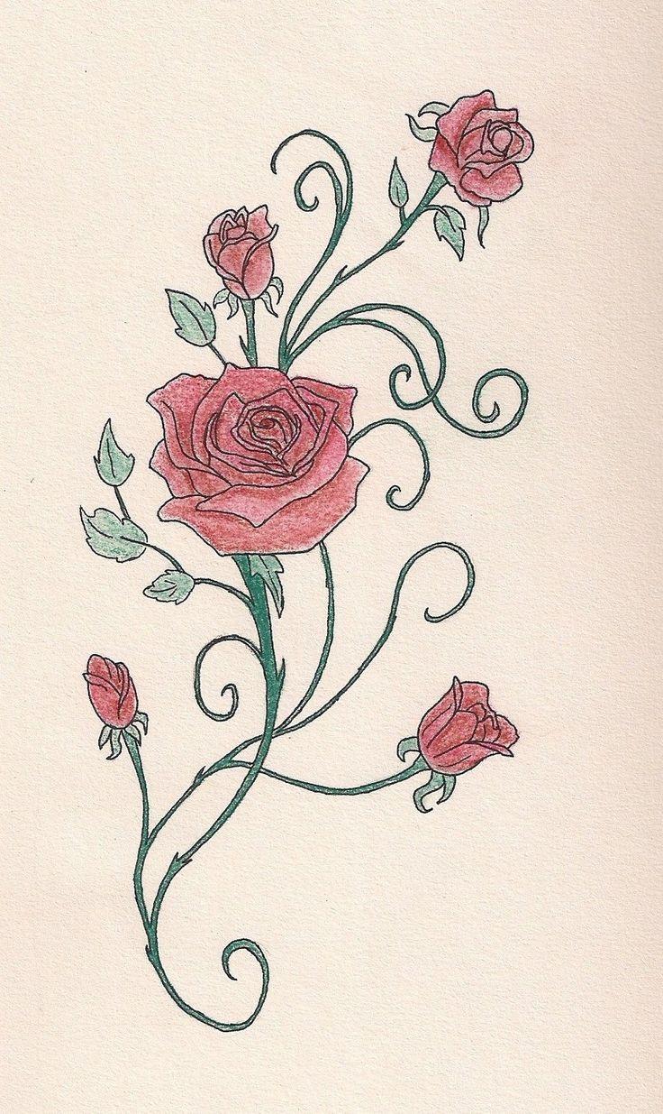 736x1235 Rose Vine Drawing Designs Best Ideas About Rose Vine Tattoos