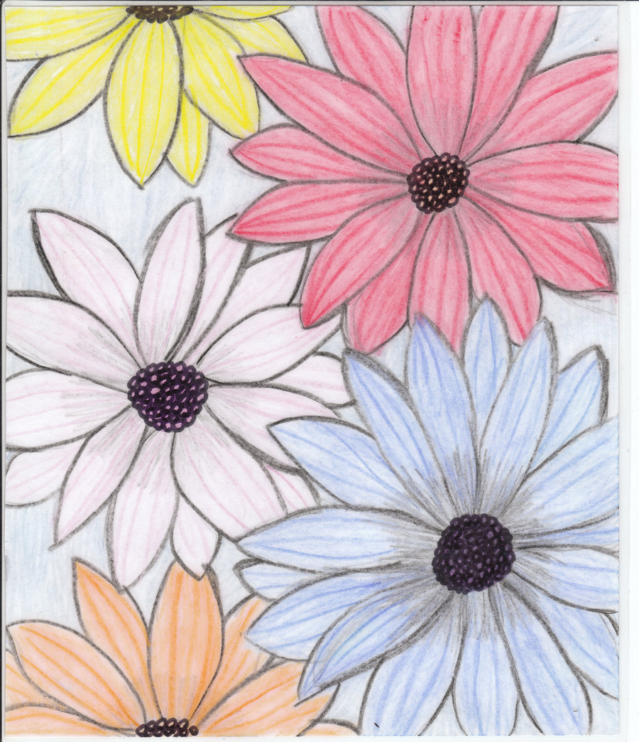 900x1044 Flowers For Flower Lovers. Flowers Drawing.