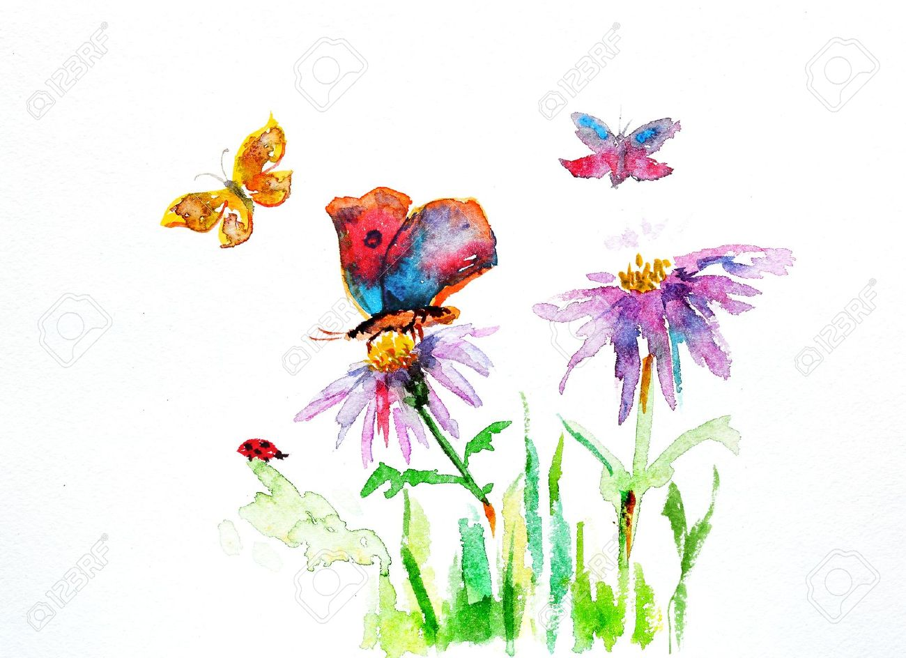 1300x944 Watercolor Drawing Of A Flower With A Butterfly Stock Photo