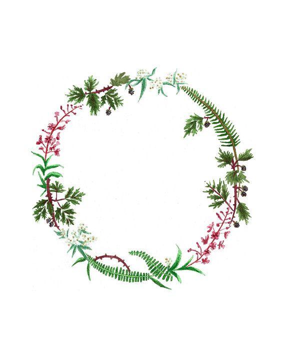 570x713 Birth Wreaths Drawing