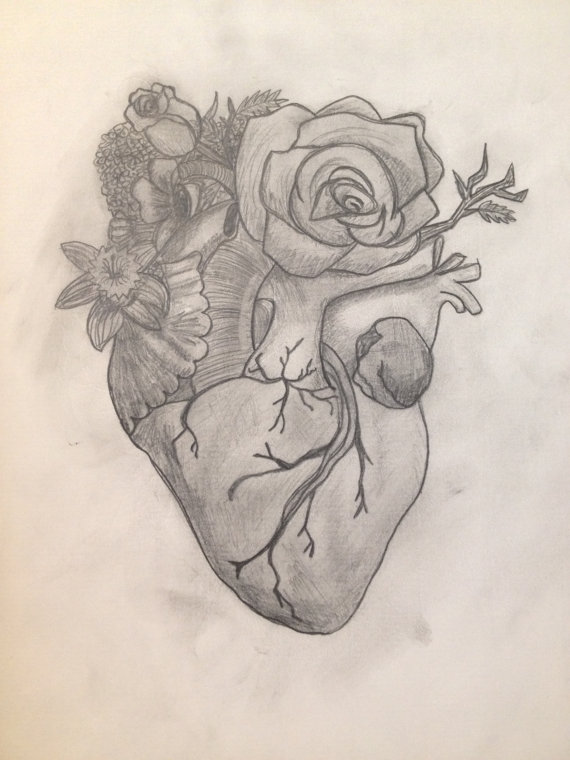 570x760 Gallery Pencil Drawings Of Flowers And Hearts,